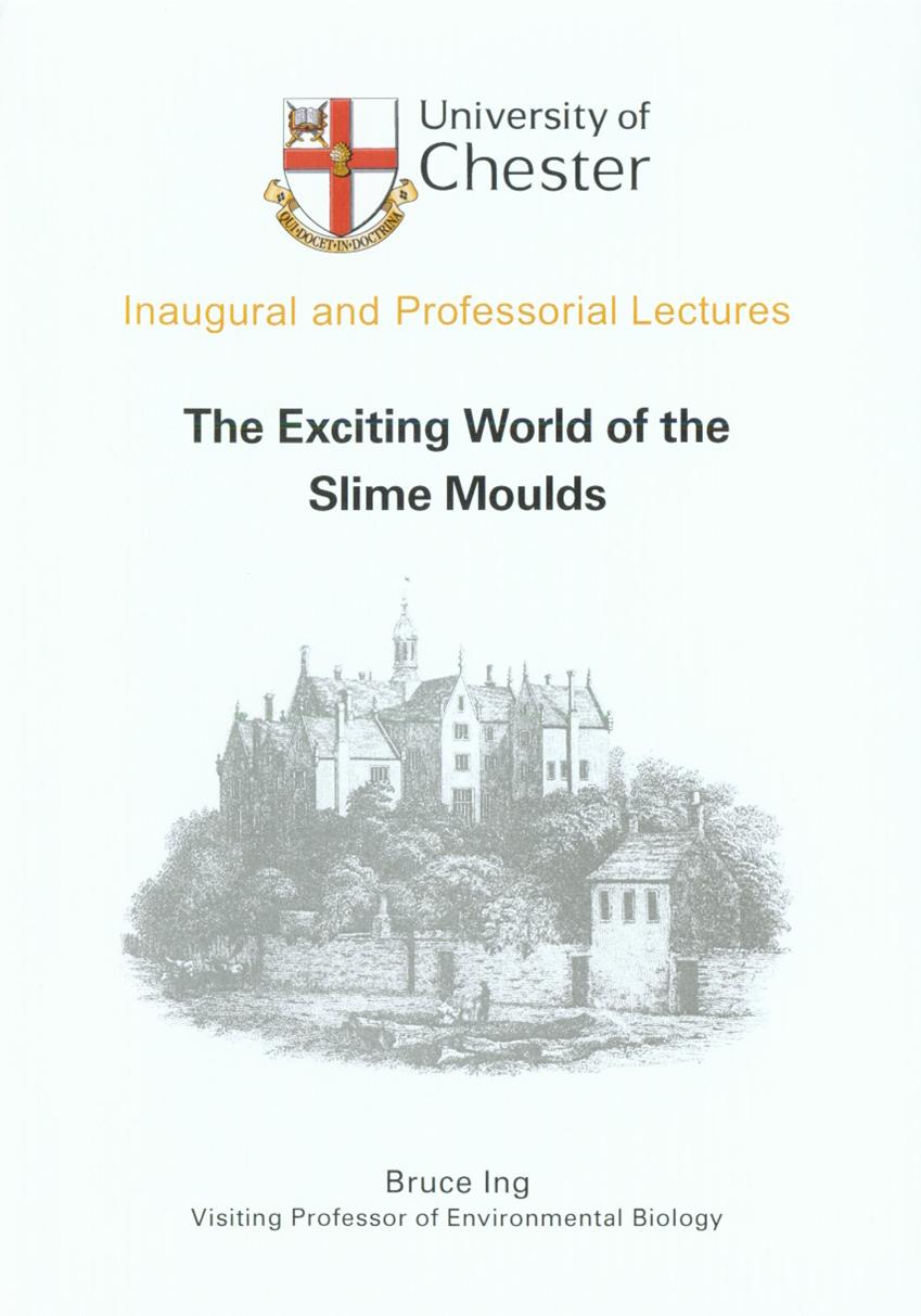 The Exciting World of Slime Moulds