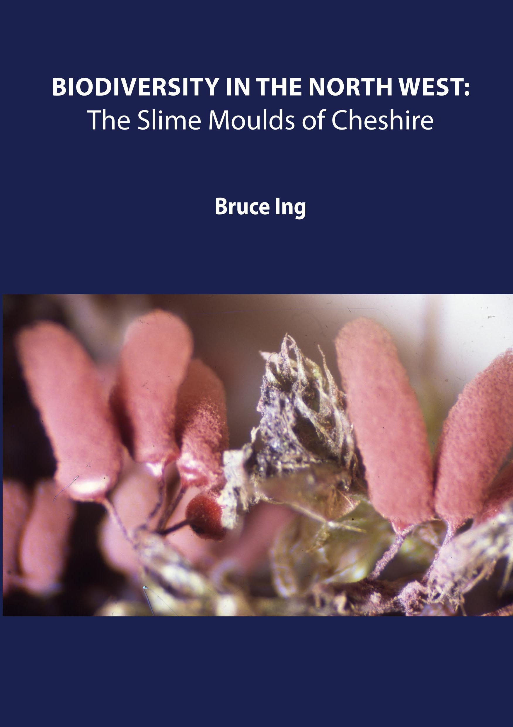 Biodiversity in the North West: The Slime Moulds of Cheshire