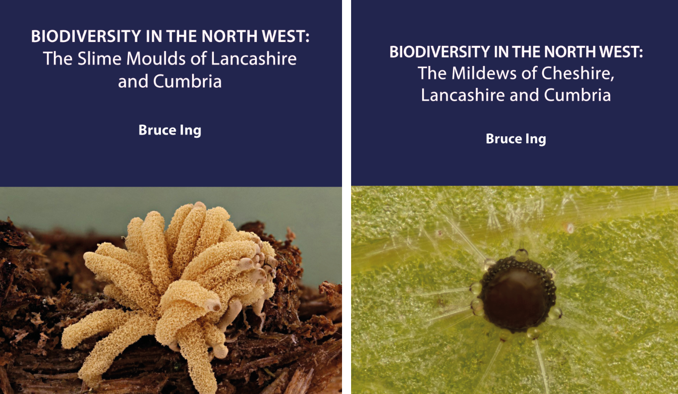 Biodiversity in the North West: 2020 SPECIAL OFFER - \'Mildews\' and \'Slime Moulds\'