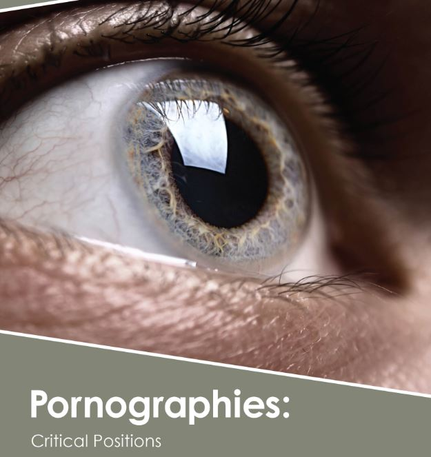 Pornographies: Critical Positions